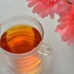 ローランドの弟子「アデル」は紅茶しか飲まない?歌舞伎町のホスト